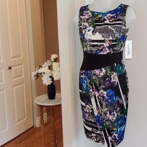NWT Joseph Ribkoff Sleeveless Dress 8